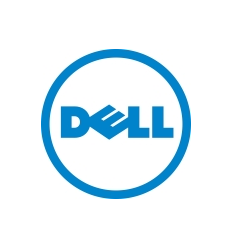 Dell EMC DELL 2.4TB SFF 2.5'' SAS 10k 12Gbps HDD Hot Plug for G13 servers 512e (W9MNK)