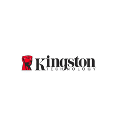 Kingston Branded DDR4 4GB (PC4-19200)