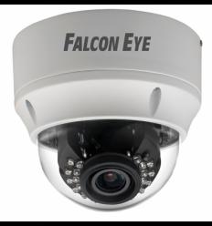 Falcon Eye FE-IPC-DL201PVA Универсальная